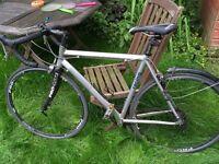 Pro-lite ex professional road racing bike