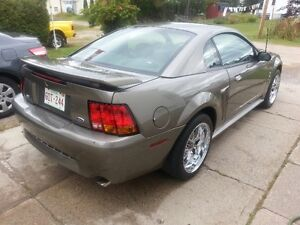 2001 Ford Mustang SVT Cobra Coupe (2 door)