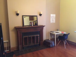 Furnished 4 1/2 condo next to Mcgill and DT