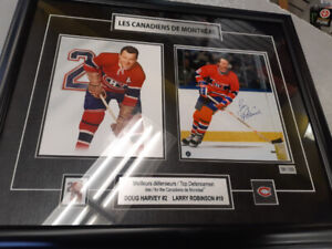 cadre collection canadiens