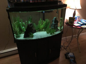 45G Bowfront with stand and supplies