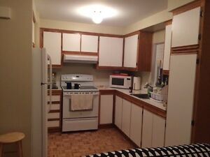Big 3 1/2 apartment - December Available