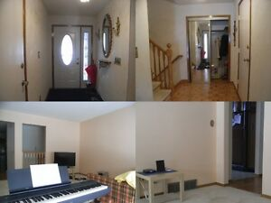 1 student room, step to 202, Winter 2017 sublet close to UW, Kitchener / Waterloo Kitchener Area image 2