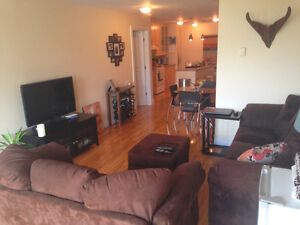 Beautiful spacious 2 bedroom apartment in heart of plateau.