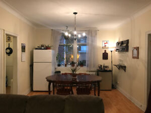 Downtown apartment to sublet starting June 1 for 3 months