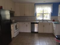 3 Rooms for Rent in Big Farm House