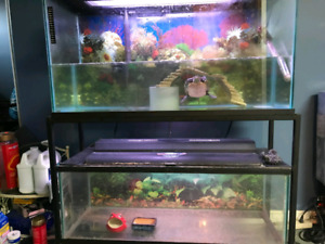 Selling 2 fish tanks