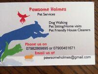 Pawsome Holmes