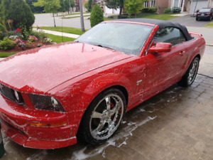 MOBILE CAR DETAILING (FEEL THE POWER OF STEAM CLEANING)