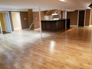 AJAX - Walk out Basement for rent (2 rooms)