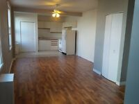 Downtown One Bedroom Apartment