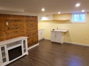 Be the first! Newly renovated basement studio/room in East City!
