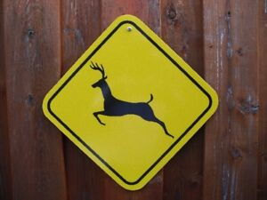 Road Sign (Real)