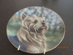 Yorkie Collectors Plates