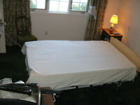 Large electric hospital bed