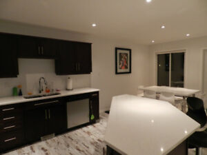 Modern, fully furnished condo to rent in Brandon, MB