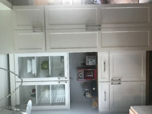 Thomasville Kitchen Cabinet (damaged)