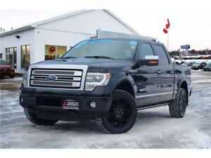 2013 Ford F-150 Platinum REDUCED | HEATED/COOLED LEATHER | NAV