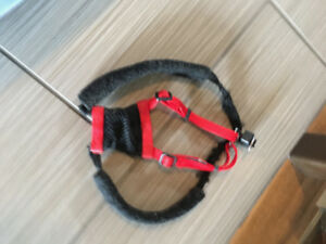Black and Red Dog Harness Yuppy Puppy