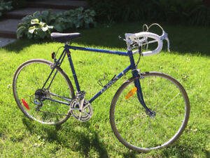 Reliable road bike searches new owner