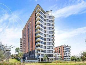 Brand New Apartment Riverwood Canterbury Area Preview