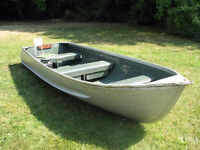 Aluminum fishing boat and motor for sale