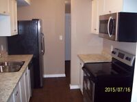 Fully Renovated 1650 including water&heat