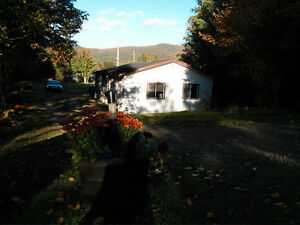 Cabin for rent Margaree