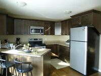 Peace river Two bedroom fully furnished includes utilities