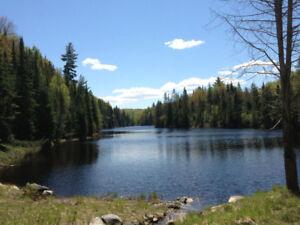 Terrain 100 acres avec 2 lacs
