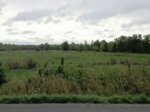 Hobby farming land and building lot.