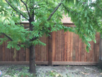 Quality Wood Fence work and repair offering affordable prices