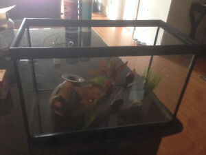 5gal Fish Tank with Accessories