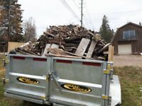 RESIDENTIAL YARD AND COMMERCIAL PROPERTY MAINTENANCE AND CLEANUP