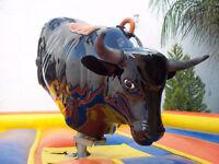 Mechanical Bull Rental