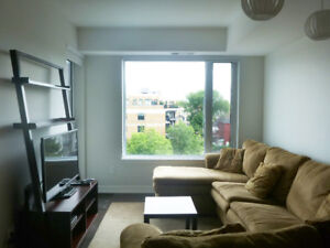 Awesome furnished One Bedroom + Den Condo in a Luxury Building