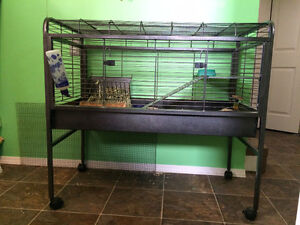Guinea Pig (or other small animal) Cage and Accessories