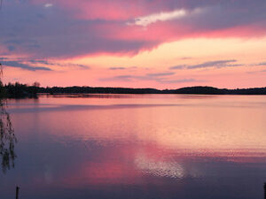 Buckhorn Lake Lovely Cottage sleeps 8, available this weekend