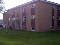 Close to UdeM - Brand New 1 Bedroom Apartment,*Spring Promotion*