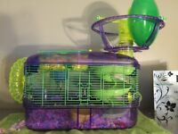 Hamster and all necessities 100$OBO