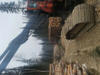 Log truck needed (top rates paid)