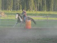 Ranch Riding Camps