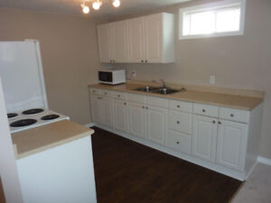 Morinville Renovated, Large One Bedroom Basement Suite