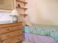 Single room in three girl flatshare