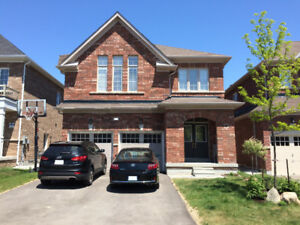 FEMALE ONLY: QUEEN ST. & CREDITVIEW RD. 1 BR BSMNT