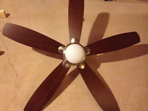 Celestial Ceiling Fan w/ Light