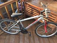 Apollo women's mountain bike