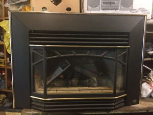 Natural Gas fireplace inseet -Pacific Energy
