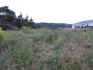 …1.24 ACRE OCEANFRONT..INCREDIBLE VIEWS..AVONDALE. St. John's Newfoundland image 19