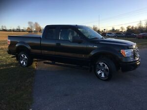 2012 Ford F-150 XLT Kawartha Lakes Peterborough Area image 5